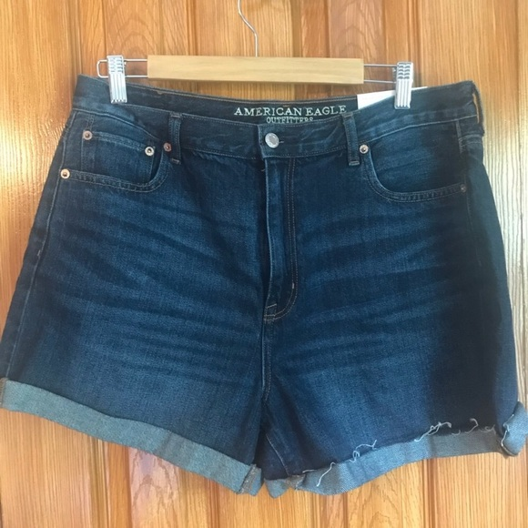 American Eagle Outfitters Pants - American Eagle Mom Short